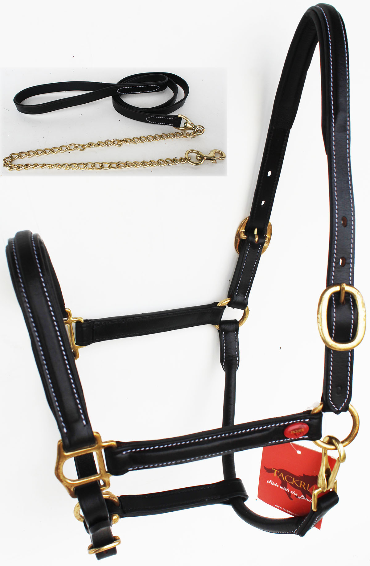 Horse English Western Padded Leather Show Halter Chain Lead  Full 803215F  buy cheap