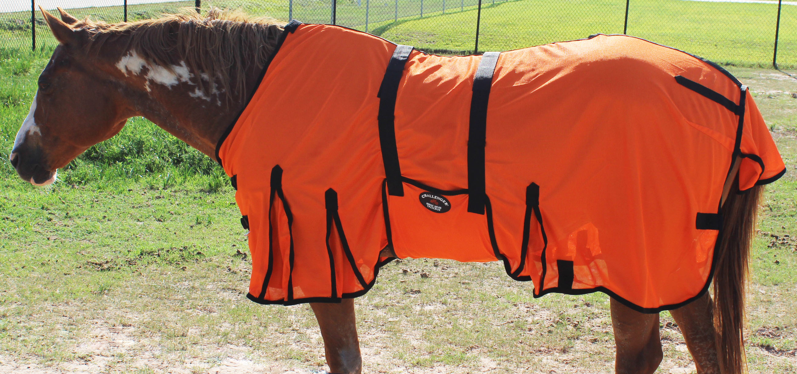 Horse Bug Mosquito Fly Sheet Summer Spring  Airflow Mesh UV  73411  hot sale