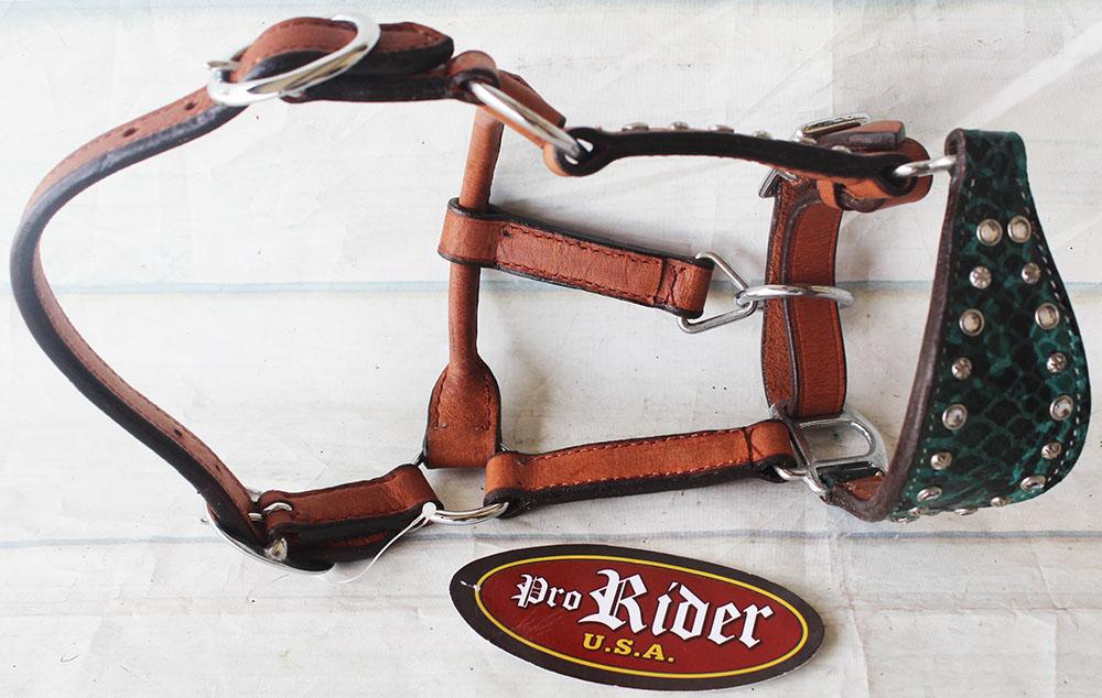 Tachuela del caballo Muserola Cuero Bronco mostrar halter para atar Envoltura 28122