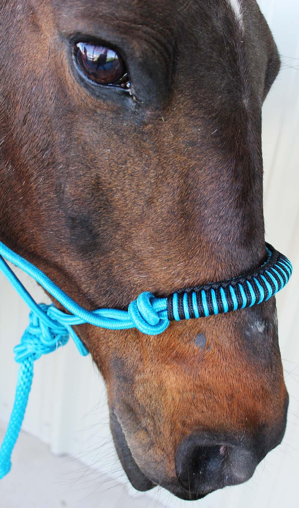 Nylon Braided Horse Rope Halter Lead Noseband Tack Equine Rodeo Bundling 1 Navy M